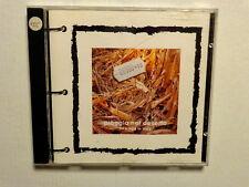 PIOGGIA NEL DESERTO  -  NEW AGE IN ITALY  -  CD 1989  NUOVO NON SIGILLATO