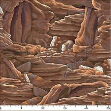 "QUILTING TREASURES ""SUNDANCE"" 24798-A WESTERN CANYON ROCK FABRIC PRICE @ 1/2 YD"