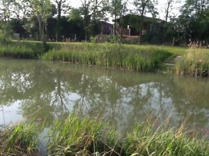 HOLIDAY LOG CABIN SECLUDED FISHING LAKE IN NORFOLK