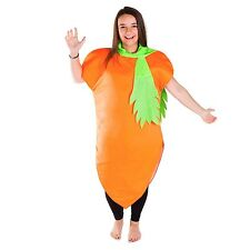 CARROT FOOD & DRINK FANCY DRESS HEN STAG NIGHT OUT COSTUME