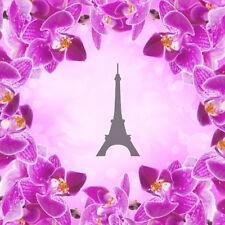 Eiffel -2, Aerografo Airbrush Nail Stencil Unghie Autoadesivo 30 Pezzi