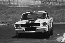 Ford Shelby GT350 R Mustang & Dick Carter –1965 winner Road America 500– photo 3