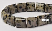 Dalmation Jasper 10x10mm 2-Hole Square Stone Beads (approx. 16 inch strand)