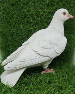 PIGEON BIRD ANIMAL GARDEN STATUE ORNAMENT FIGURINE SCULPTURE WHITE