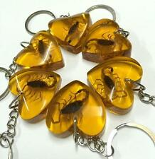 Crazy prices 10 pcs gold scorpion lover heart keychain (3 days time)