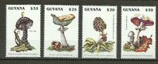 Guyana 1996 - Mushrooms / Fungi, MNH