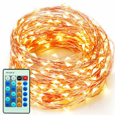 Warm White Copper Wire Fairy String Lights Waterproof 100 LED Christmas Decor