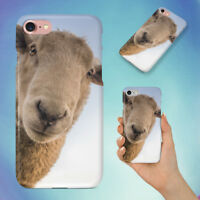 BROWN SHEEP HARD BACK CASE FOR APPLE IPHONE PHONE