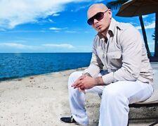 Pitbull Glossy 8x10 Photo