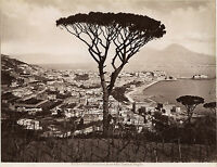 Italia Panorama Di Napoli Sommer Vintage Albumina Ca 1875