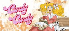Candy Candy: La Serie Completa En Español Latino (16-DVD'S)