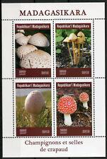 Madagascar 2019 MNH Mushrooms Toadstools Fly Agaric 4v M/S Fungi Nature Stamps