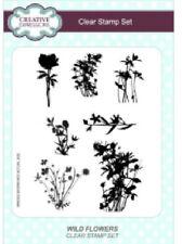 Creative Expressions flores silvestres Transparente A5 CEC781 conjunto de sello