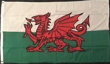 Welsh Flag Wales Cymraeg Red Dragon Cardiff/Swansea Cymru Rugby Football Sports