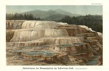 1895 Sinterterrasse des Mammutgeisers im Yellowstone Park Original Farbdruck