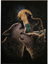 Animal Print Animal Print Decorative Indoor Signs/Plaques