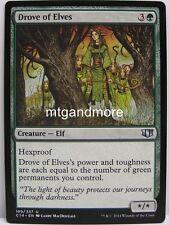 Magic Commander 2014 - 1x  Drove of Elves