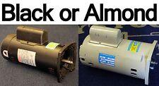 2 Hp Square Flange Pool Pump Motor 1 Year Warranty 2.0 HP