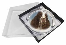 Springer Spaniel Glass Paperweight in Gift Box Christmas Present, AD-SS10PW
