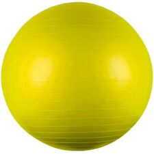 65cm Diameter Yoga Exercise Swiss Stability Fitness Ball with Pump