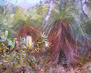Australian Artist Hal Barton's oil titled 'Coastal Banksias & grass trees'