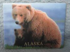Mother Bear & Cub Alaska Magnet Souvenir Travel Refrigerator