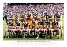 Offaly All-Ireland Senior Hurling Champions 1998: GAA Print