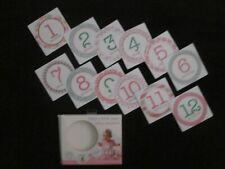 Stepping Stones Girl Baby's First Year Belly Stickers, Photoshoot, Shower Gift