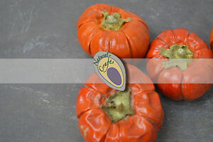 Dried Mini Pumpkins (multiple pack sizes)