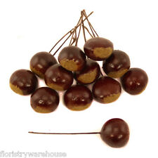 Artificial Autumn Conkers Chestnuts Craft Picks (x 12) for Craft and Display Use