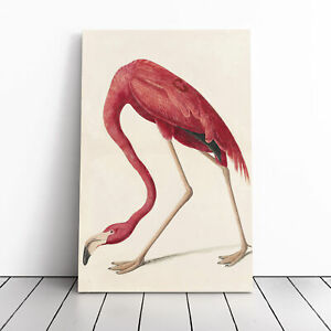 John James Audubon Flamingo Framed Canvas Print Wall Art Picture Large