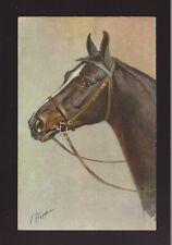 Animals HORSE black Artist I Rivist c1930/40s? PPC