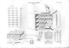 Stampa antica ALLEVAMENTO BACO da SETA attrezzature carro 1848 Old print