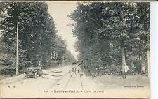 CP 41 Loir-et-Cher - Marcilly-en-Gault - En Forêt