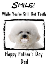 Bichon Frise Humorous Happy Father's Day card chfd40 A5 Personalised Greetings