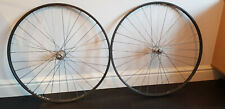 Handbuilt Track Wheelset (Ambrosio Nemesis Rims on Campagnolo Record Hubs)