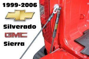 Dee Zee Authentic Truck Bed Tailgate Assist Shock For 99-06 Silverado / Sierra