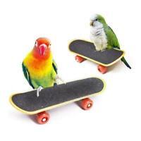 Pet Intelligence Foot Toys Training Mini Skateboard S4L6 Stand Bird Perch Q8M1