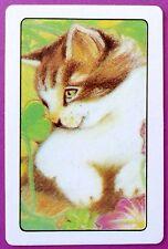 SWAP CARD. TABBY & WHITE KITTEN / CAT PORTRAIT. MINT COND