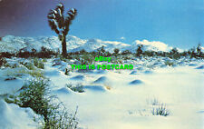 R581102 The High Desert in Winter. Western Resort Publishers. Ferris H. Scott. B