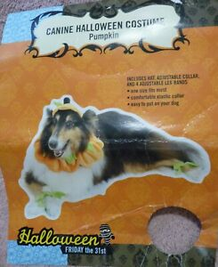 """Dog Pet Pumpkin Costume Hat, Collar, 4 Leg Bands One Size Up to 22"""" Velour NEW"""