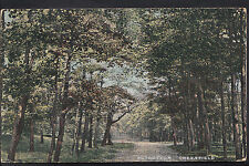 Lancashire? Postcard - Nutbottom, Greenfield   DR126
