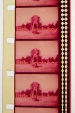 LITTLE JUNGLE BOY  SHORT 16MM FILM MOVIE ROLLED NO REEL  G182