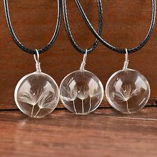 Fashion Women Real Dandelion Glass Bottle Pendant Long Leather Chain Necklace