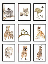A3 Australian Animal Prints - nursery artwork art print