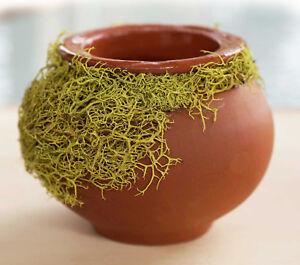 Natural Green Moss Trim Vase Decorative Ceramic Clay Pot Home Décor Unique Gifts