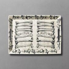 "JOHN DERIAN for Target Threshold 19"" x 14"" Anatomy Bone Print Serving Tray NWT"