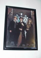 Harry Potter Poster #46 FRAMED w/ Ron and Hermione Emma Watson