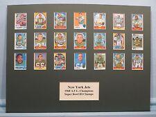 New York Jets led by Joe Namath  - 1968 AFL & Super Bowl III Champions