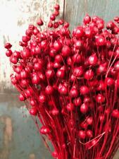 DRIED FLAX BUNCH 100 GRAMS WEDDING FLOWER ARRANGING CHRISTMAS DECORATION RED 18""